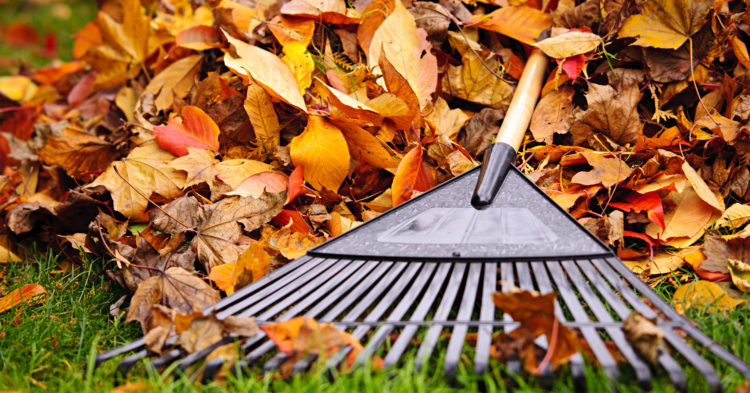 Prepare Your Home for Winter with These Steps